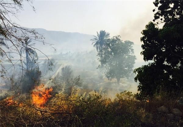 آتش سوزی باغ های روستای مکو در شهرستان جم مهار شد