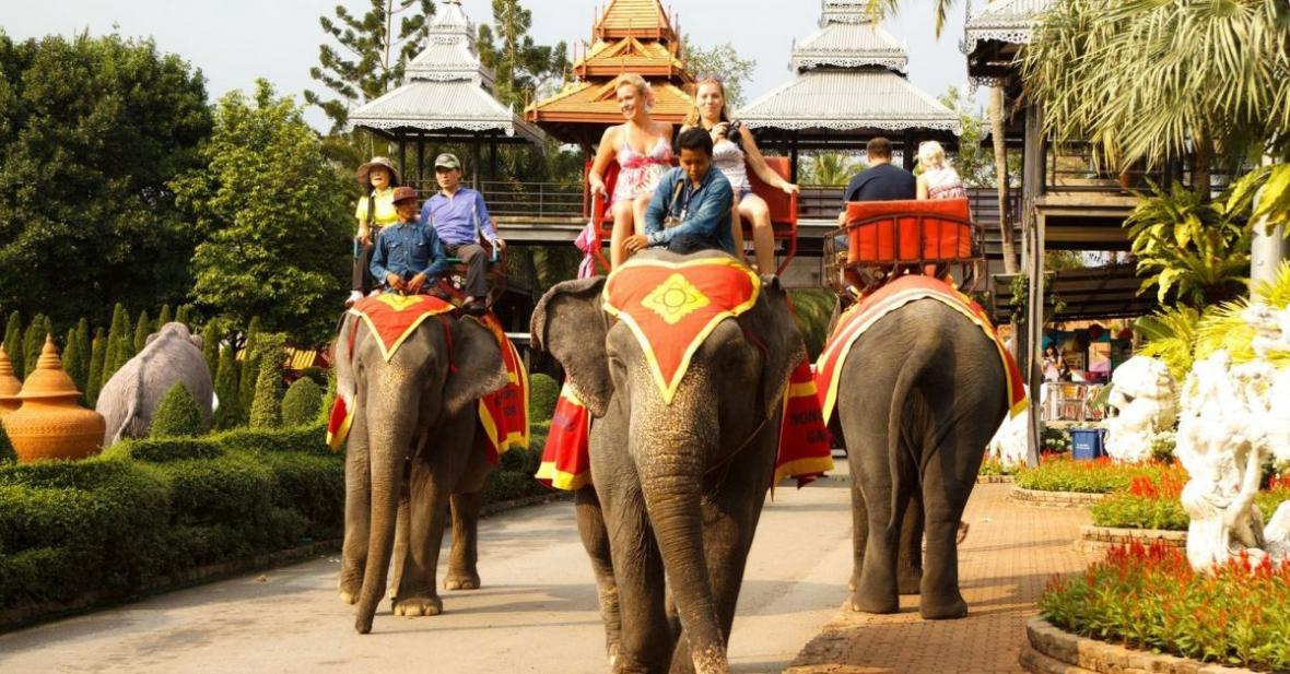 آشنایی با دهکده فیل ها پاتایا