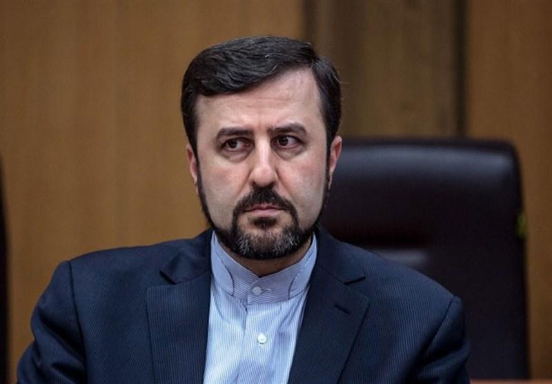 نماینده ایران: استقلال و بی طرفی آژانس در دوره ریاست جدید حفظ گردد