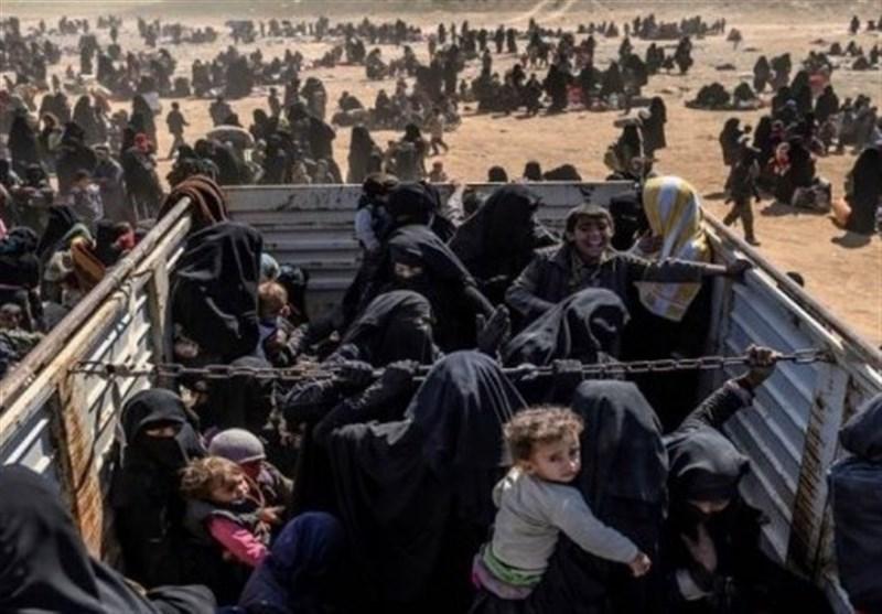 ترکیه 71 تروریست داعشی را به وطنشان در اروپا بازگرداند