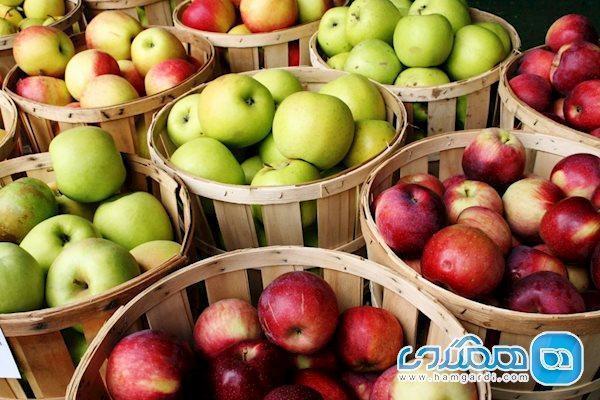 با مصرف این میوه ها، چاق نمی شوید