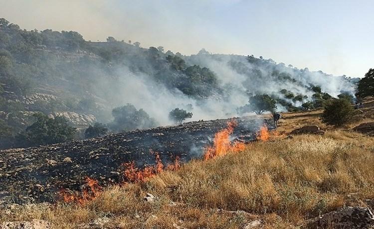 پشت پرده آتش سوزی های سریالی در کشور