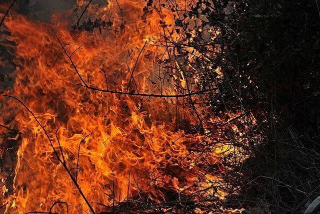 مهار آتش سوزی در منطقه پیروزگ شهرستان بویراحمد