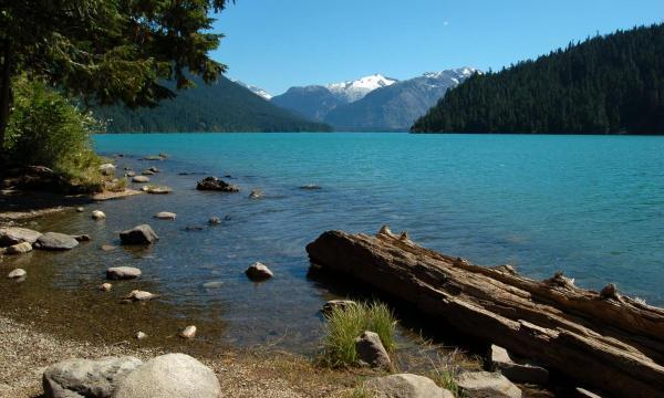 مقاله: بهترین چیزهایی که باید در ونکوور و ویستلر کانادا تجربه کنید!